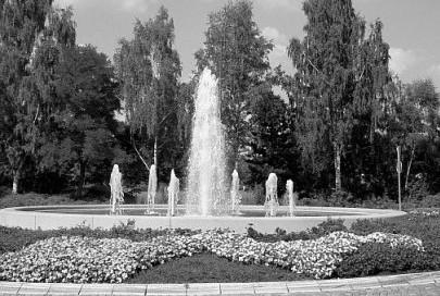 Ihr Ortsverein in Stadtallendorf